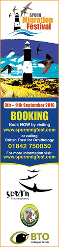 Spurn Bird Obs Ad