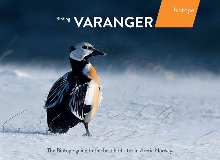 Varangerfjord And The Varanger Peninsula Have Long Been Famous European Birdwatching Destinations I Remember Being Entranced In 1970s By Account